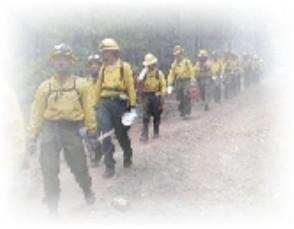 10 standard fire orders   18